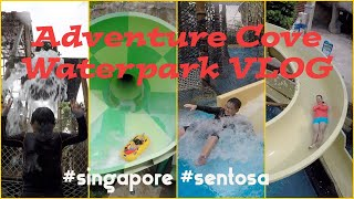 Adventure Cove Waterpark VLOG (Resort World Sentosa, Singapore)