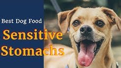 Best Dog Food for dogs with sensitive Stomachs .