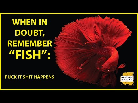 50 Inspirational Fish Pet Quotes And Sayings In English