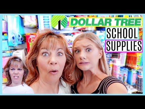 Dollar Tree SCHOOL SUPPLIES SHOPPING w/my CRAZY mom | Senior Yr 2019
