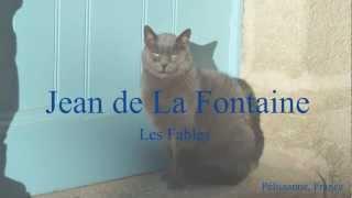 Скачать French Fable Le Corbeau Et Le Renard By Jean De La Fontaine Slow Reading