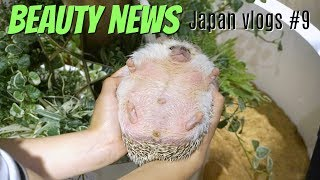 BN JAPAN VLOGS #9 - Tokyo Round 2   Hedgehogs, Nightlife & Coming Home