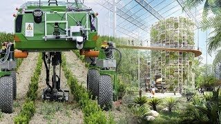 China Innovation! The Rise Of Advanced Technology in Farming Taking Place In China