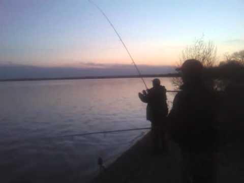 рыбалка на оз.лукомльское