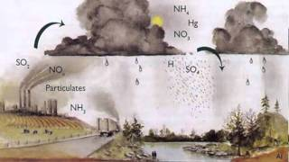 12 Principles of Green Chemistry.m4v