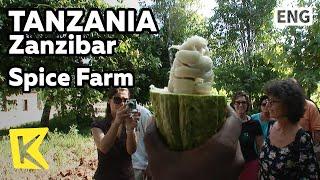 【K】Tanzania Travel-Zanzibar[탄자니아 여행-잔지바르]향신료 농장 투어/Spice Farm/Tour/Clove/Food/Curry Rice