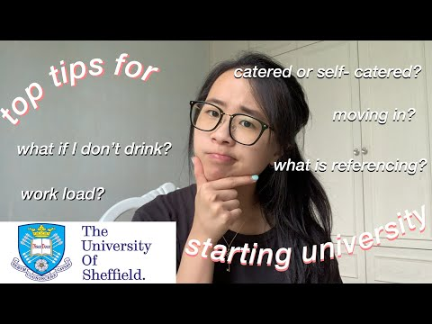 first year at University of Sheffield: tips I've learnt to help freshers