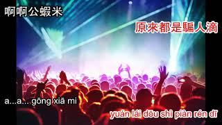 Gong xia mi - 公蝦米 DJ karaoke