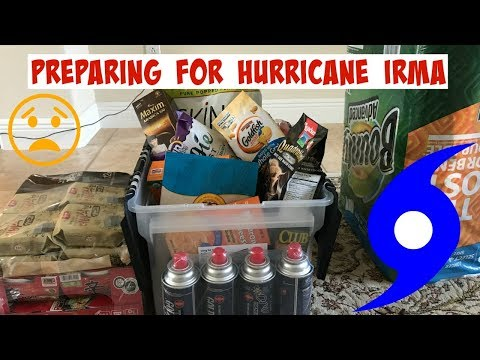🌪️Preparing for Hurricane Irma (vlog)🌪️