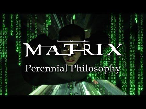breaking free in the matrix essay