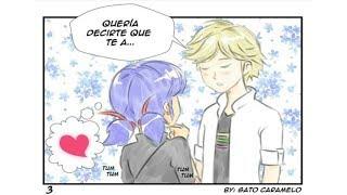 Queria decirte que te A... | 10  Comic Ladybug Español [Adrinette] [Marichat] [