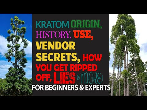 Kratom History, Use, Selling Secrets, Info For Beginners & Experts W/TIME STAMPS