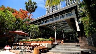 ไม่ธรรมดา # 25 Silver Lining  Pattaya