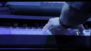 Toto - Make Believe (40 Tours Around the Sun)