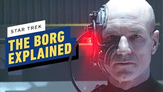 Star Trek: The History of the Borg Timeline