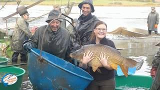 Výlov rybníka Dalovák - Pasování rybářským právem