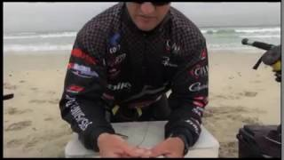 asfn bait how to rig a live mullet harder