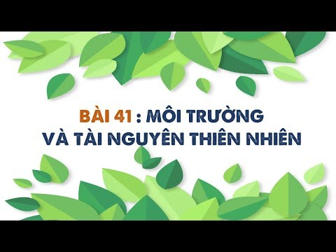 Địa Lí 10 - Bài 41: Môi Trường Và Tài Nguyên Thiên Nhiên [BINGCLASS.COM]
