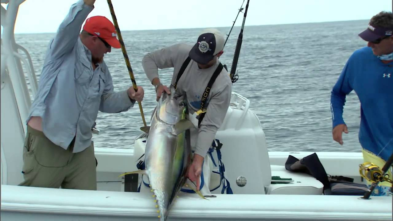 Into the blue louisiana fishing is awesome 2012 for Into the blue fishing