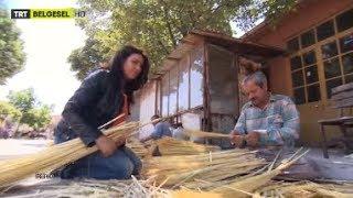 Edirne'de Çalı Süpürgesi Yapımını Görüntüledik