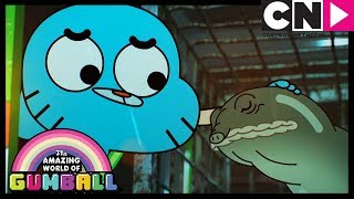 Gumball | The Watterson's Evil Turtle | Cartoon Network
