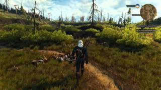 Witcher 3: Parry Combat Tutorial