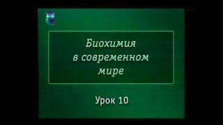 Биохимия. Урок 10. Гормоны
