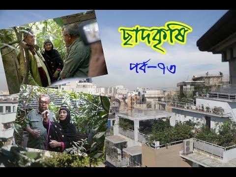 Rooftop farming || EPISODE 73 || HD || Shykh Seraj || Channel i || Roof Gardening || ছাদকৃষি ||