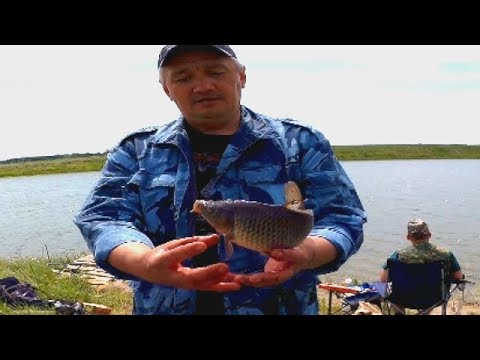 Ловля карпа и карася на озере Белом!!! Рыбалка на платном водоёме.