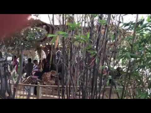 Santa Ana Zoo Carousel