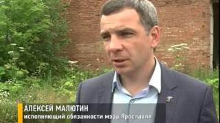 В Ярославле появится приют для бездомных собак