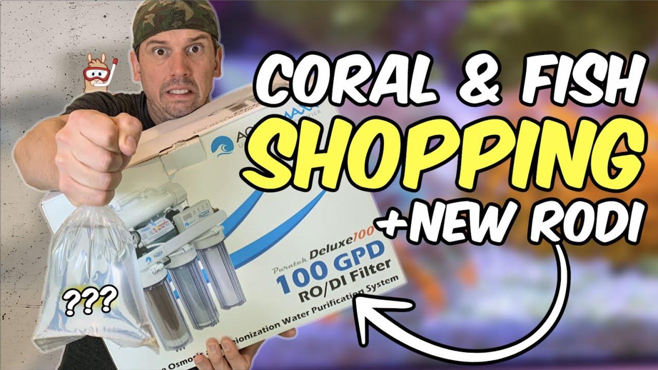 Saltwater Fish & Coral Shopping + New RODI System Install (Aquamaxx Puratek 100GPD w/Booster Pump)