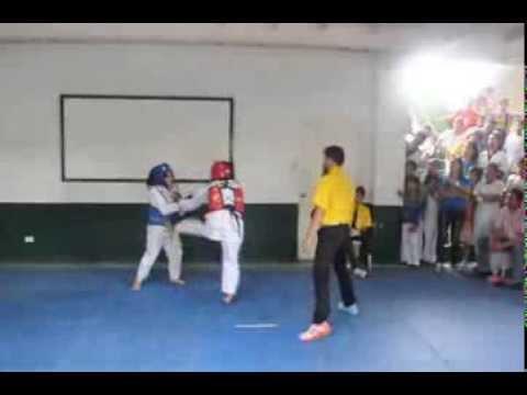 provincial meet 2013 taekwondo history