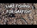 Gar fish shoreham beach 29 September 2018