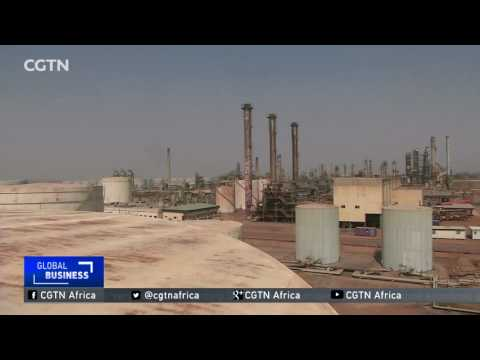 Association of African Oil Producers plans to build more refineries