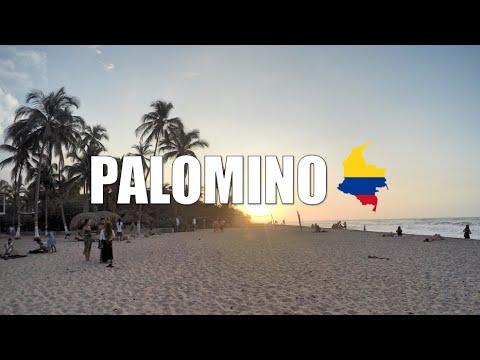 PALOMINO LA GUAJIRA | COLOMBIA