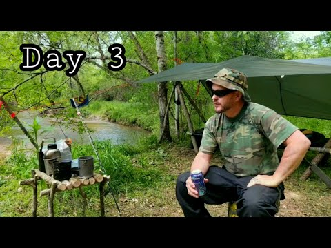 Fly Fishing: BIG Chum Salmon in a Tiny Alaskan Creek from YouTube · Duration:  27 minutes 26 seconds