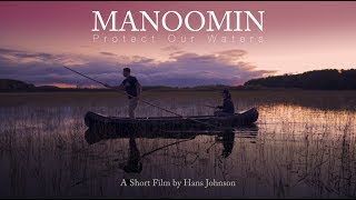 Manoomin - Protect Our Waters