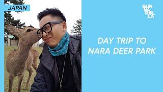 a trip to nara deer park in japan