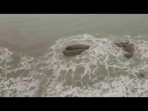 ĐOẠN VIDEO RÕ HƠN VỀ NGƯỜI CÁ XUẤT HIỆN TẠI ISRAEL