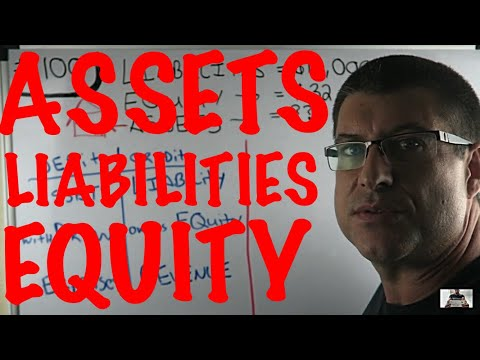 ASSETS = LIABILITIES + EQUITY / THE BASIC ACCOUNTING EQUATIO