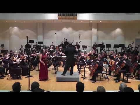 Brahms Violin Concerto in D  The BMSM Symphony Orchestra    Eyal Ein Habar, Victoria Gelman