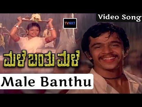 Male Banthu