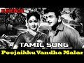 Poojaikku Vantha Malar  Full Tamil Song  JUKEBOX  Gemini Ganesan, Savithri  HD