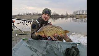 Рыбалка на карпа в марте по холодной воде флэт и пеллетс залог успешной рыбалки