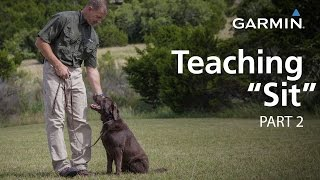 "e-Collar Training with Garmin: Teaching ""Sit,"" Part 2"