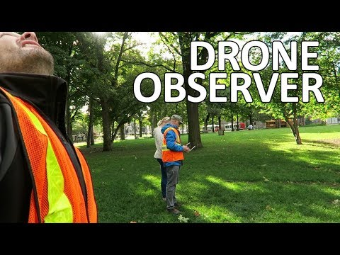 Job as a drone (visual) observer