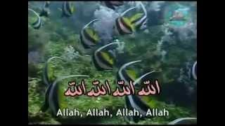 Zikir 20 Sifatullah Sifat Allah