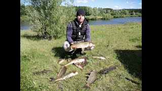 Сазан клевал ДУРОМ Рыбалка с ночевкой Плов и отдых на природе