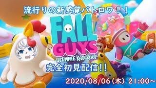 【Fall Guys】Vわんこが挑むバラエティ番組風バトロワ!?【LIVE311】